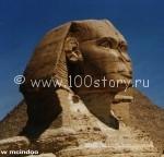 sphinx 150x144 Рецепт шампуня для египетского сфинкса