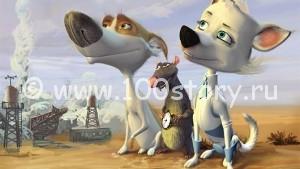 dogs 300x169 Что собаки думают о людях