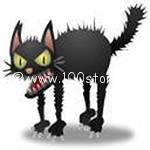 cat Котэвасия