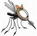 komarik Брачная ночь с комарами